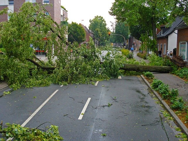 Should You Hire A Storm Damage Lawyer Or Not